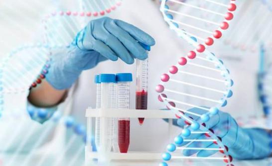 Xét nghiệm di truyền trước khi mang thai ở đâu | DNA Medical Technology