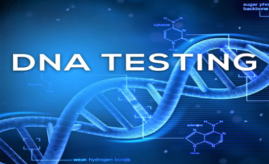 Xét nghiệm ADN ở Quận 1 TpHCM giúp tầm soát sớm ung thư | DNA Medical Technology