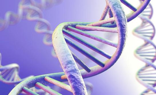 Xét nghiệm ADN ở đâu Quận 4 để phát hiện ung thư mắc phải | DNA Medical Technology